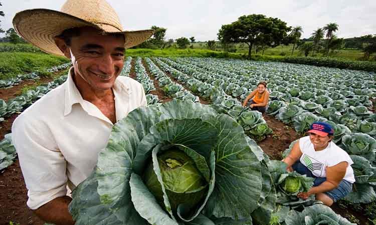 agricultor venezolano