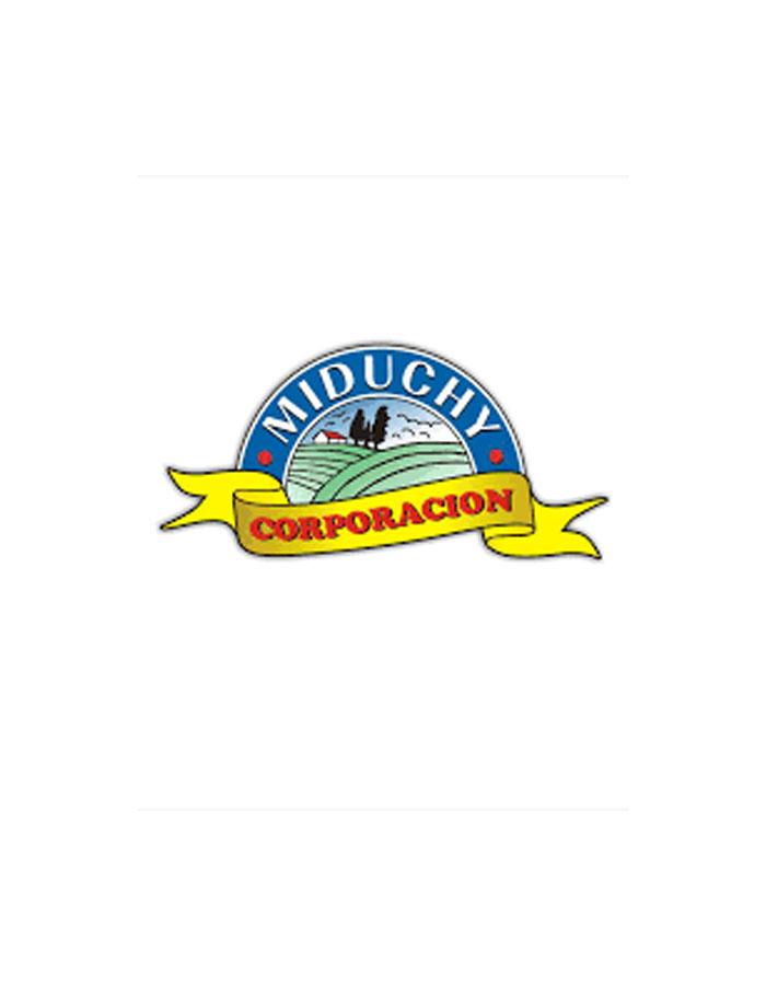 Logo-miduchi